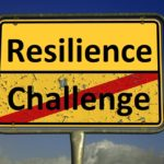 Resilience and its Core Principles – The key to Sustainable Rural Development?