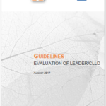 Evaluating CLLD: new guidance